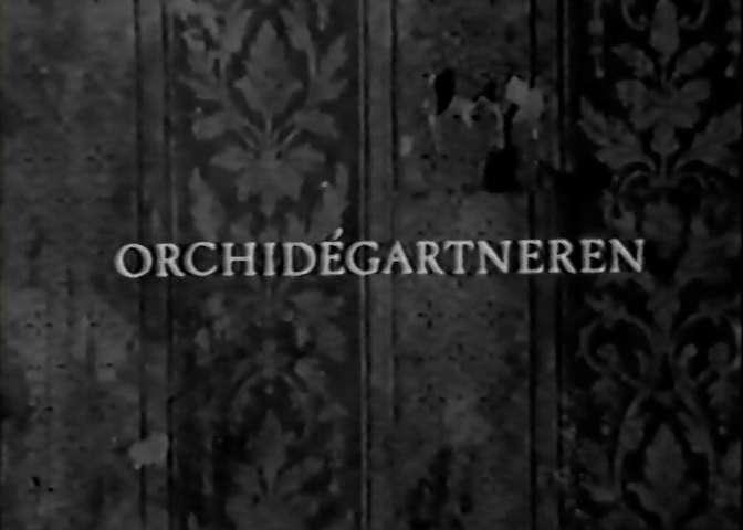 orchidegartneren0002 Lars von Trier – Orchidégartneren AKA The Orchid Gardener (1977)